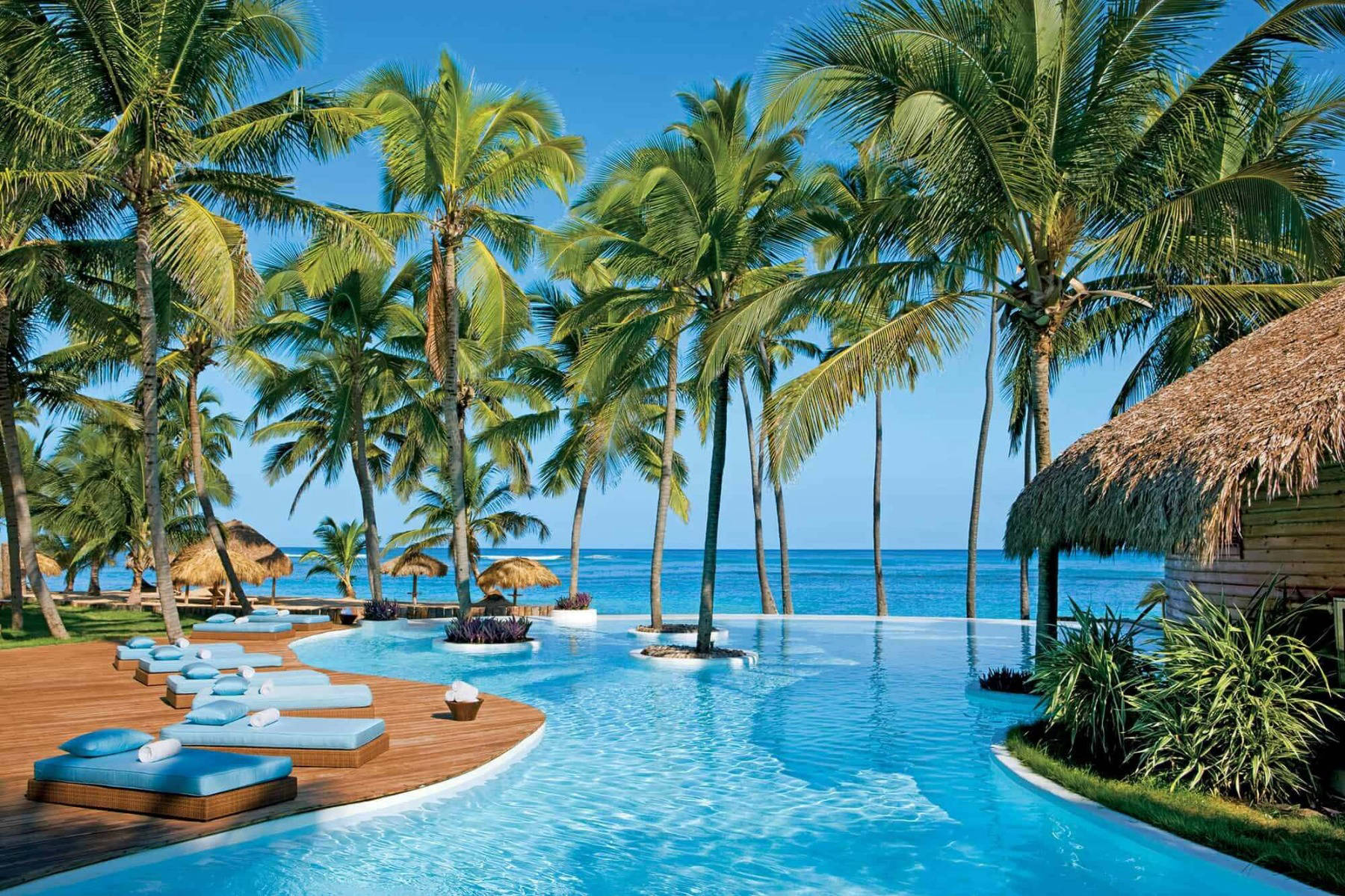 Hotel resort pool with palm trees