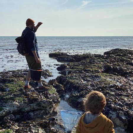 Foraging tour along the coast