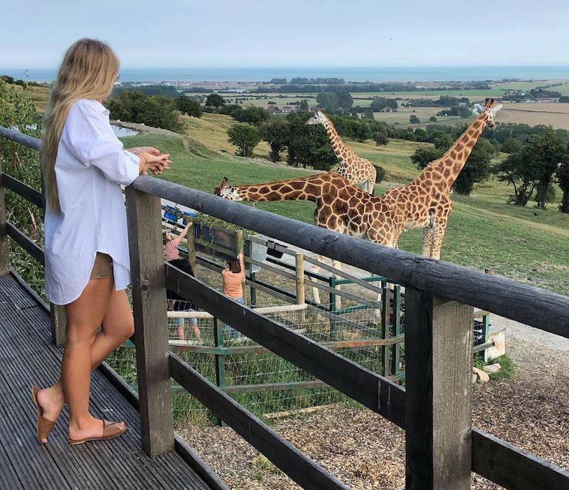 Woman overlooking giraffes at Port Lympne
