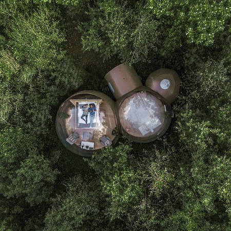 Bubble dome hotel in woodland